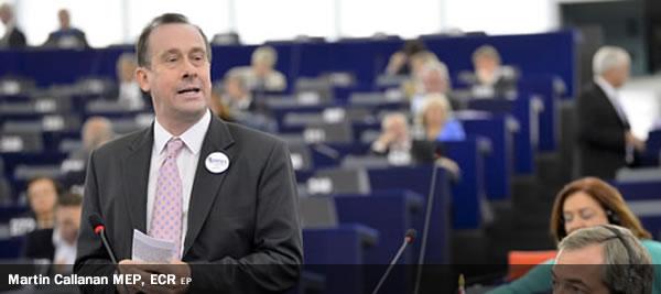 Martin Callanan, ECR